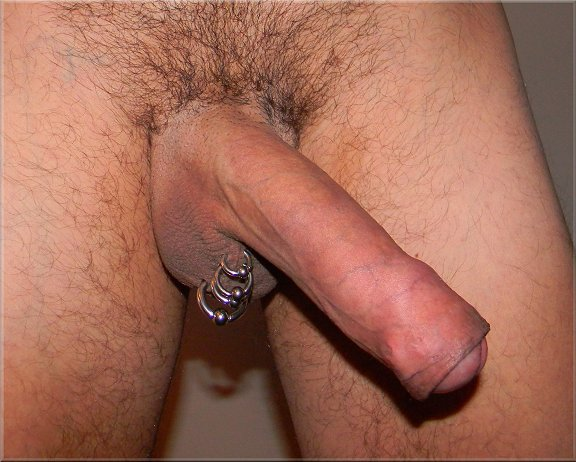 foreskin restoring erection