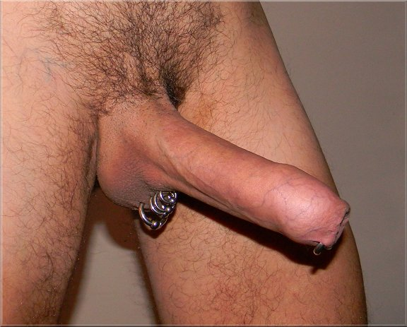 foreskin restoring erection 4